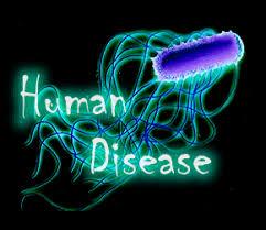 بیماری و سلامتی