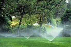 هدررفت آب در آبیاری چمن بلوار